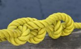 'Yellow Knot' by Doug Ross