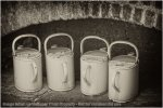 'Watering Cans' by Jane Coltman CPAGB