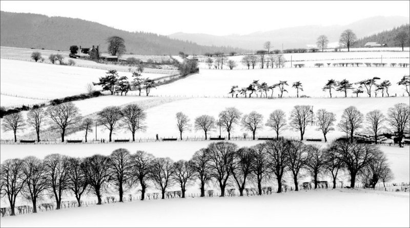 'Winterscape' by Alastair Cochrane FRPS DPAGB EFIAP